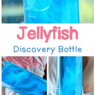 Jellyfish Discovery Bottle